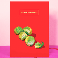 Emily Brooks Sprouts Christmas Card